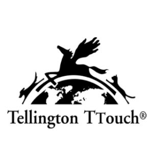 tellington t touch badge
